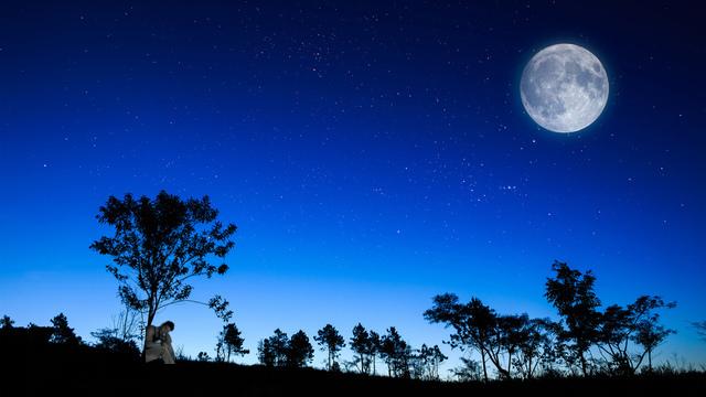 На Тропинке Луной Запорошенной
