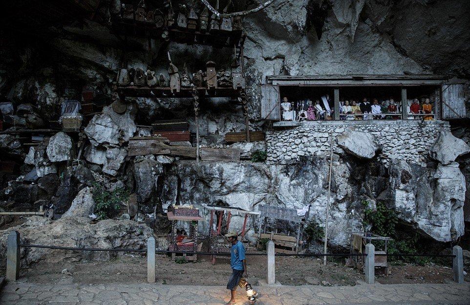 Фотографу рассказали историю о том, как тораджийский мужчина по имени Понг Румасек нашел под деревом