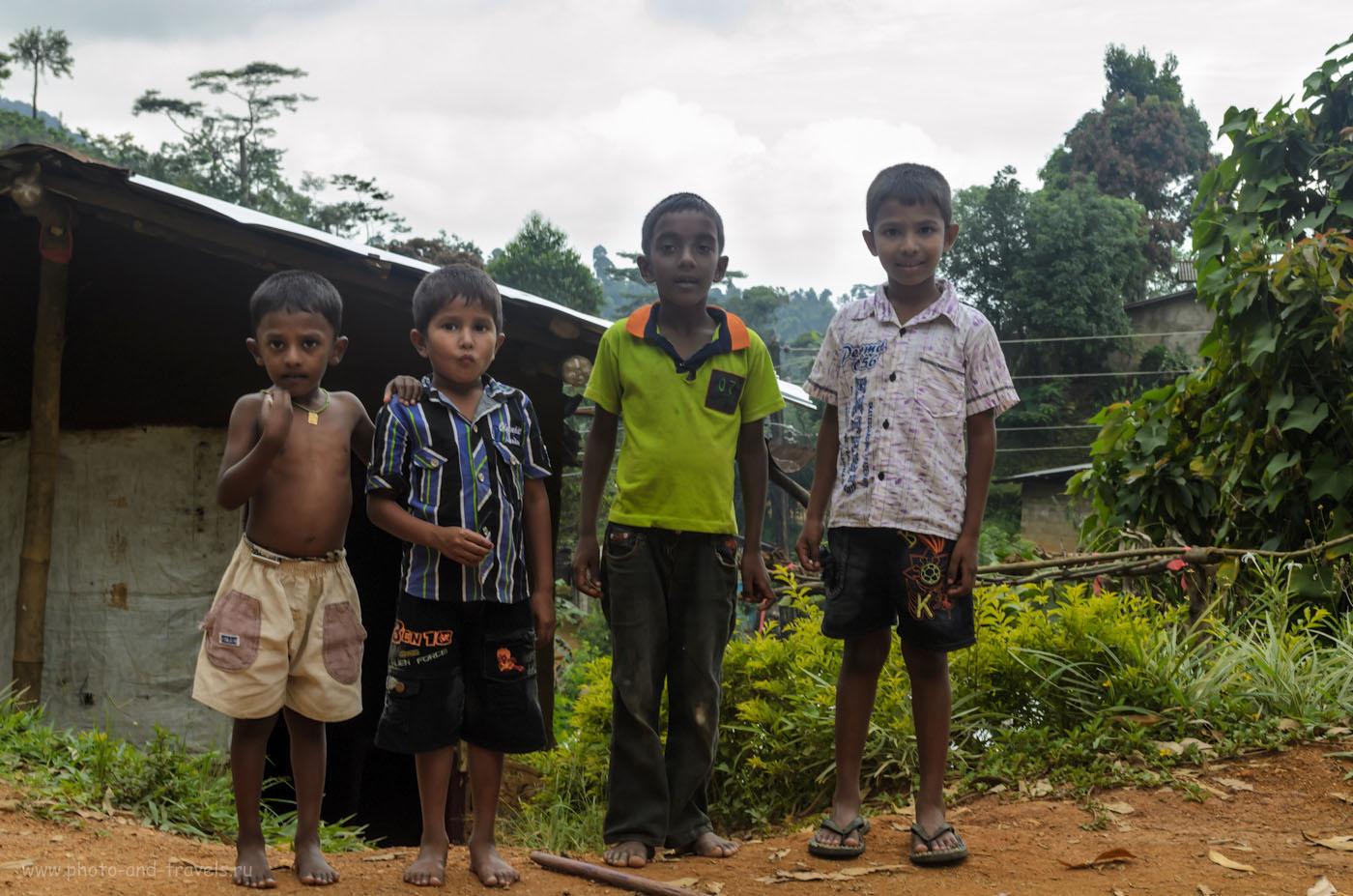 Фото 9. Эти дети в деревне Maratenna в горах Шри-Ланки (территория заповедника Хортон Плейнс) наверняка ни разу в своей жизни не видели белых людей. Отзыв о самостоятельной экскурсии на Пик Адама. Поездка в деревню Наллатанния на автомобиле.