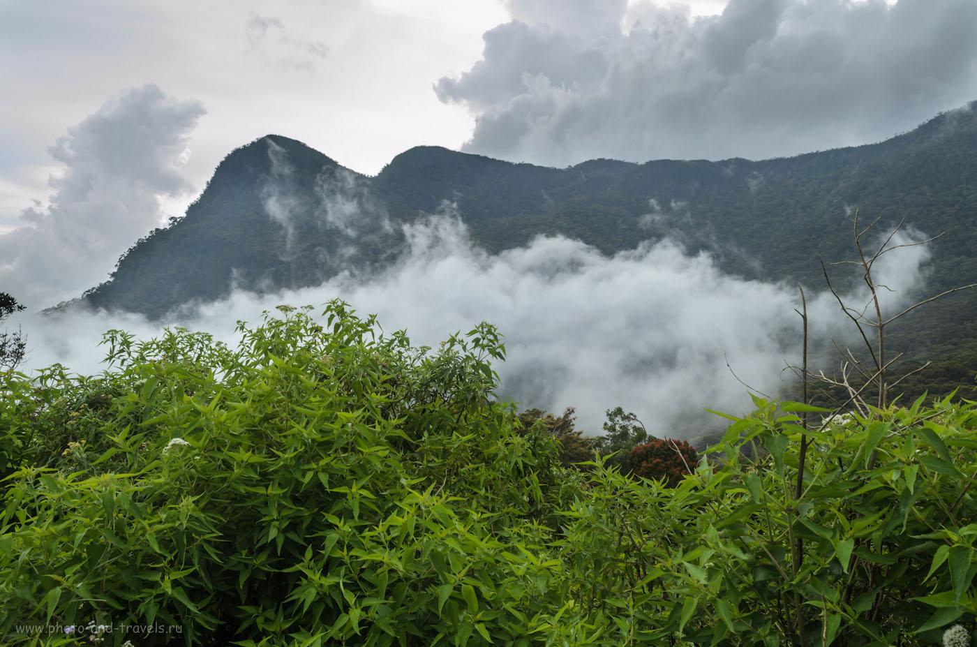 Фото 16. Совершенно дикие места на территории национального парка Хортон Плейнс (Horton Plains) в Шри-Ланке. Эти пейзажи в навряд ли найдете в отчетах туристов - мы выбрали эту дорогу случайно, Гугл-Карты маршрут этот не видит. Смотрите карту в первой главе отчета.