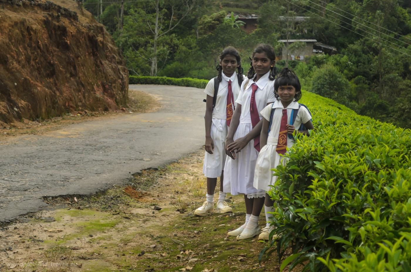 Фотография 19. Школьницы в горной деревне Шри-Ланки. Скорей всего, этот снимок снят в районе села Аграпатана. Как мы доехали до Пика Адама через территорию парка Хортон Плейнс (Horton Plains) на автомобиле.