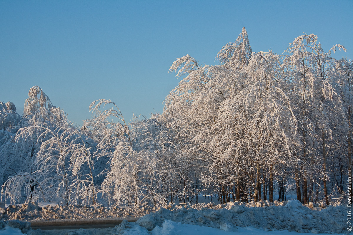 Зима на кумысной поляне 12