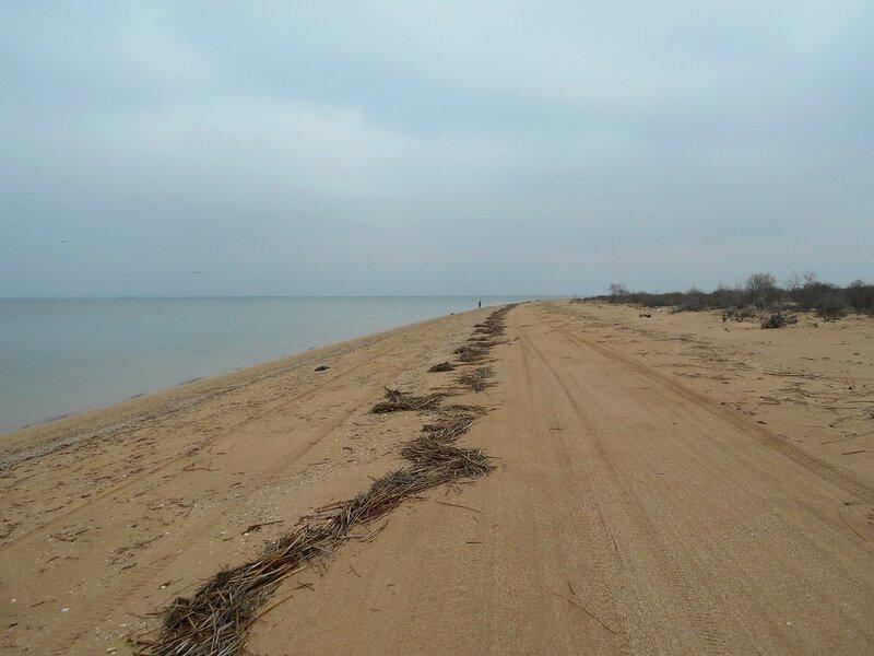 Берег тихий, пасмурный... песчаный ...  DSCN4179.JPG