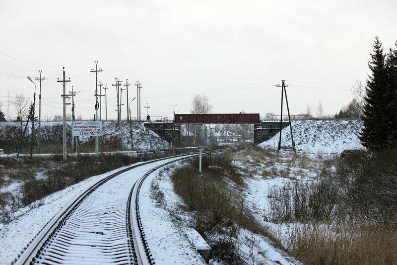 Перегон Горушки-Невельские - Невель-2, вид на Бологое-полоцкую ЖД