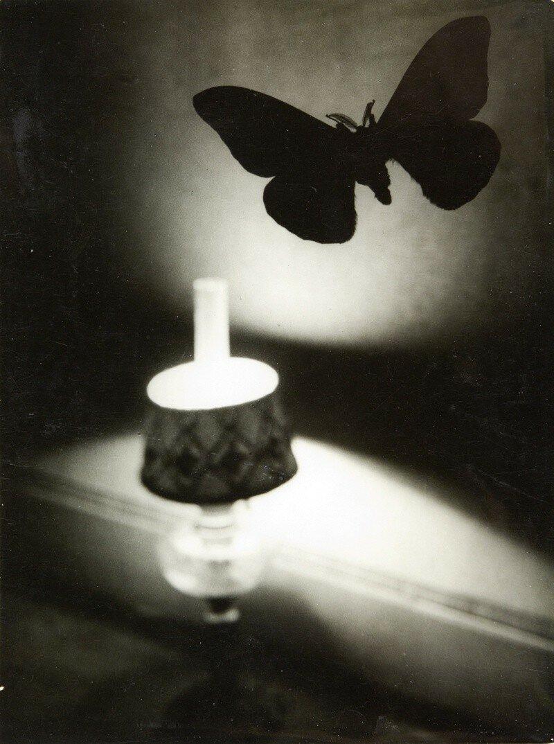 1932. Бабочка