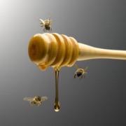 Мед и пчела