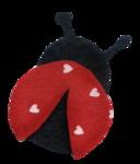 kwiniecki_lovebloomshere_ladybug.png