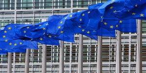 ЛДПМ вышла из Альянса за европейскую интеграцию