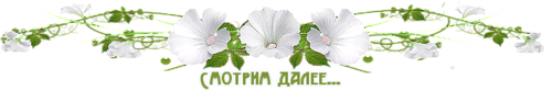 99105923_dale_forziciya1.png