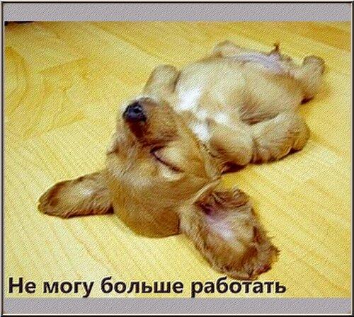 http://img-fotki.yandex.ru/get/4121/194408087.1/0_90859_5dfce816_L.jpg