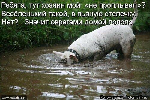 http://img-fotki.yandex.ru/get/4121/194408087.1/0_9085f_4b813dad_L.jpg