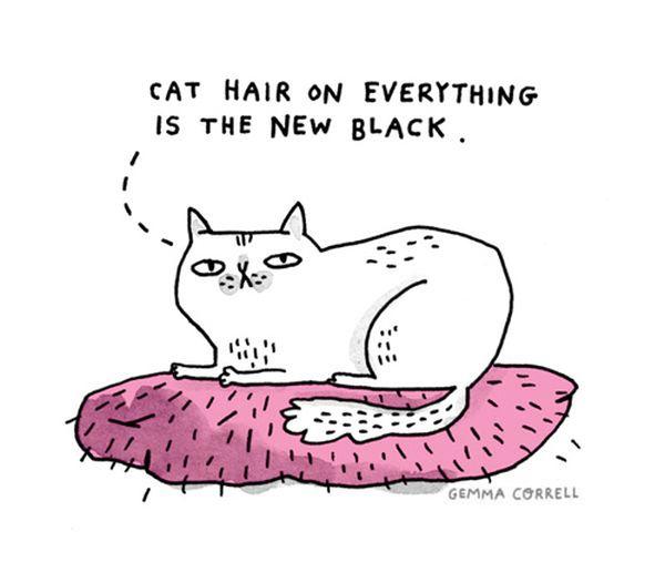 Смешные комиксы про котов на английском языке 0 c6d9e 3babd7d orig