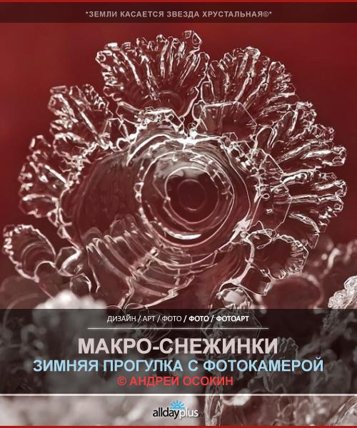 Фотограф Андрей Осокин. Снежинки под макро-объёктивом