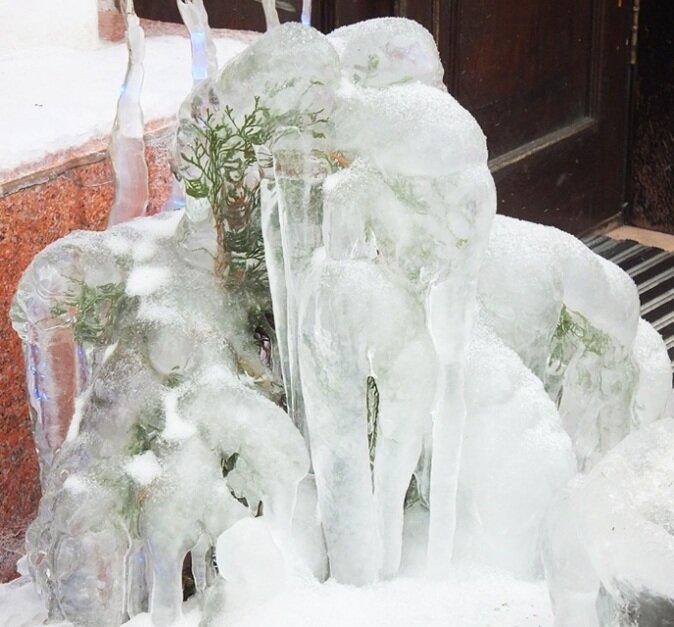 маленькой елочке холодно зимой