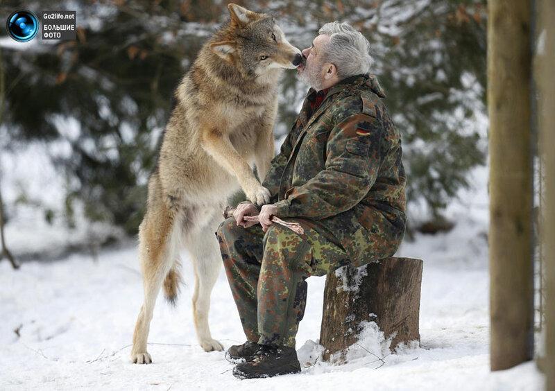 Повелитель волков из Германии