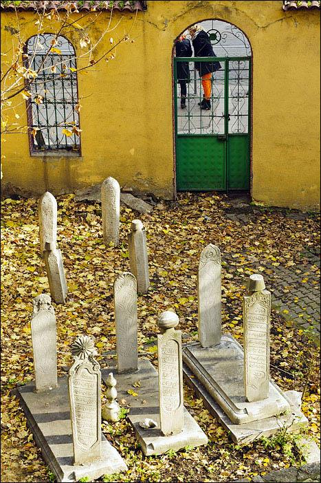 Поиск умерших людей во всех архивных базах