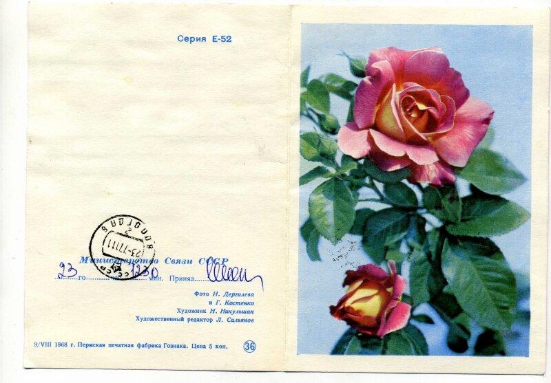Телеграммы в открытках, прикольными картинками