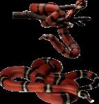 змеи  (12).png