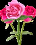 CharlieNco_ Sweet Valentine_Rose cluster.png