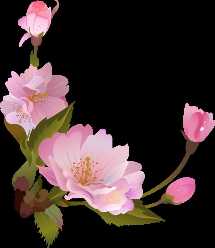 spring1 (5).png