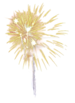 mds7722 Firework.png