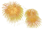 mds7754 Firework.png