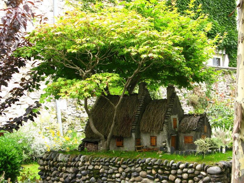 Бансай по-французски:) Высота дерева около полуметра:)