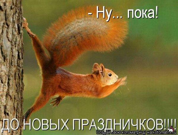 http://img-fotki.yandex.ru/get/4122/194408087.0/0_8b31a_dce5727c_XL.jpg