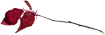 RR_HeartWhispers_AddOn_Element (18).png