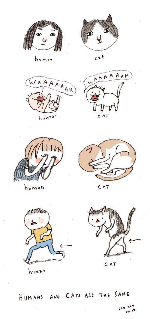 Смешные комиксы про котов на английском языке 0 c6d95 83b6b438 orig