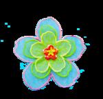 bloemmetje.png