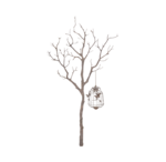 treewithcage-(BrydkaM).png