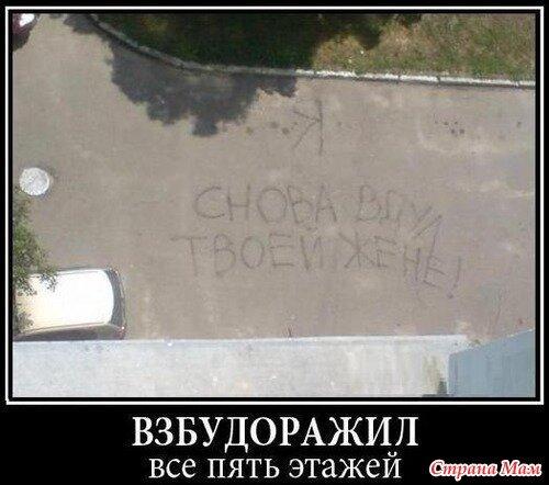 http://img-fotki.yandex.ru/get/4122/28505151.5/0_89daa_9c35f4eb_L.jpg