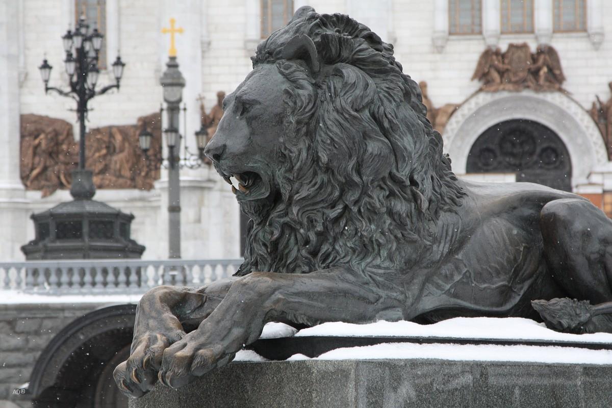 Императорский лев