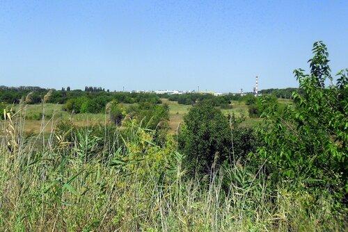 В Каневском районе, Кубань, лето 2012