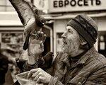 "IMG_0130 -jpg Из серии ""Любовь и голуби"". Диалог."