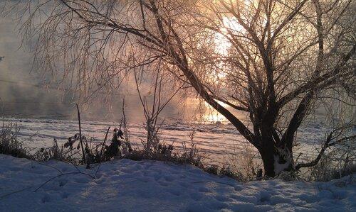 Зимнее утро и вредный мобильник