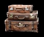 trunks, suitcases_сундуки,чемодан (1).png