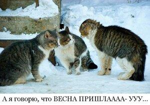 http://img-fotki.yandex.ru/get/4123/194408087.2/0_93ab3_389faf0d_M.jpg