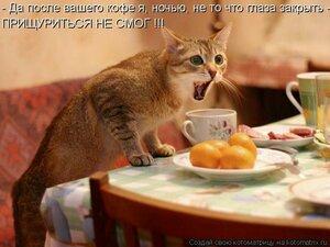 http://img-fotki.yandex.ru/get/4123/194408087.3/0_95217_b055cbab_M.jpg.jpg
