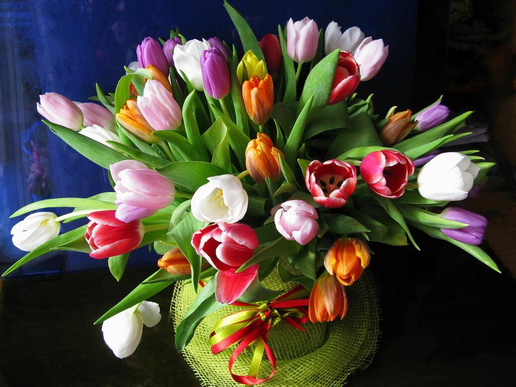 Весна в подарок
