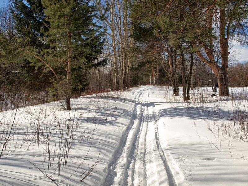 Лыжня в Заречном
