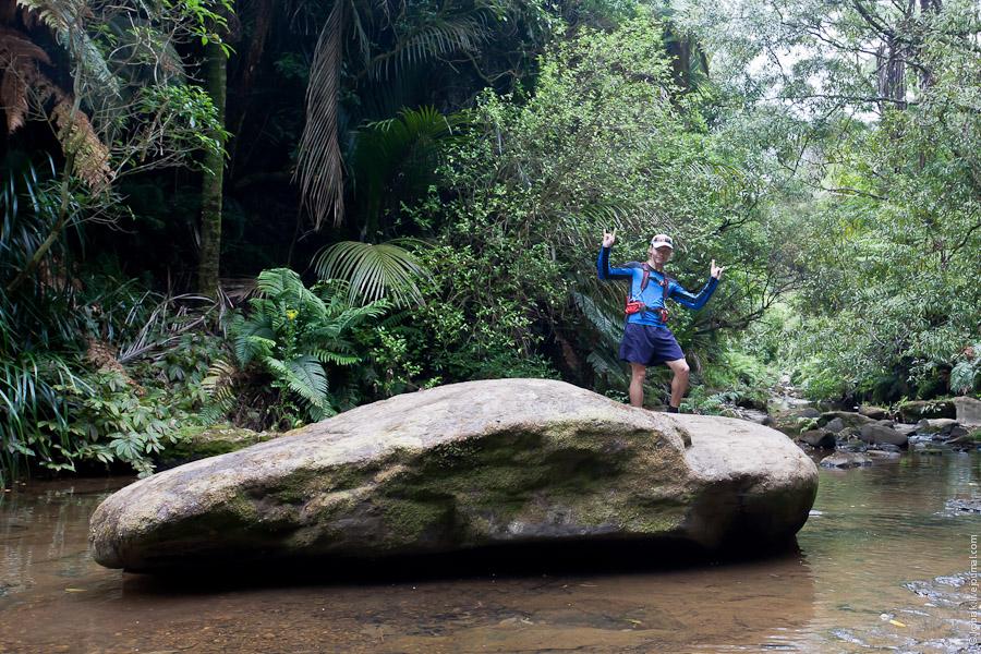 Mokoroa stream track