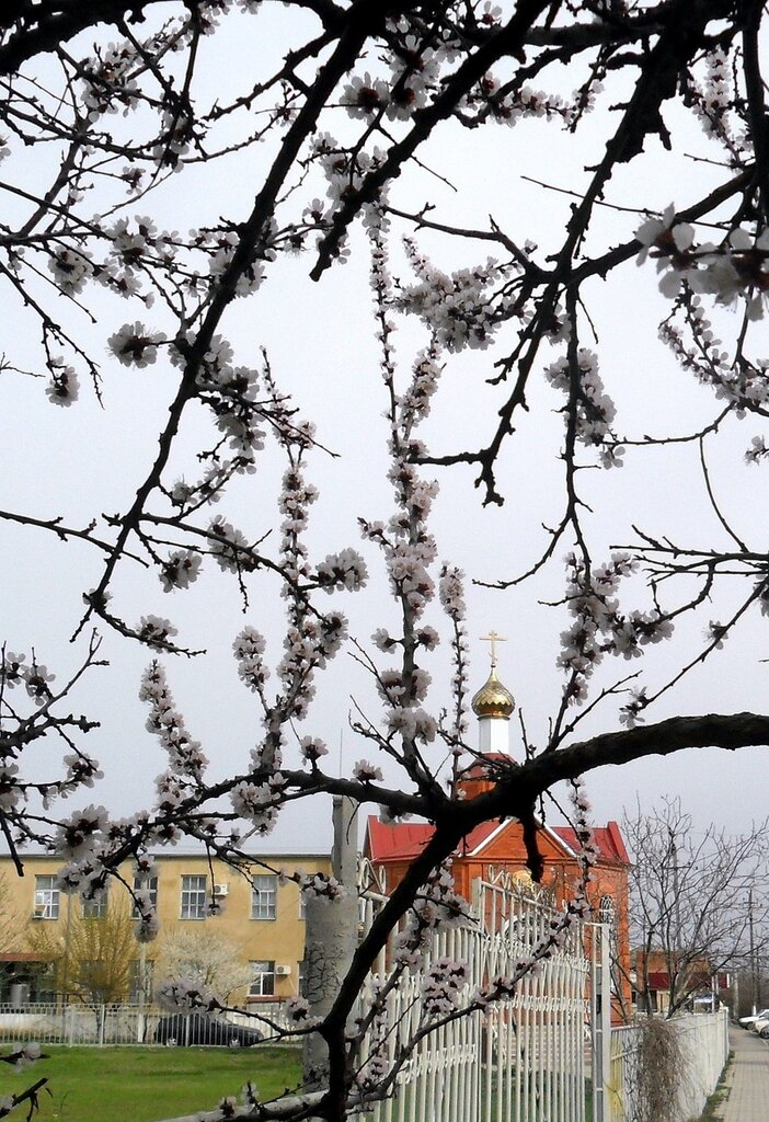 Весна! Апрель!