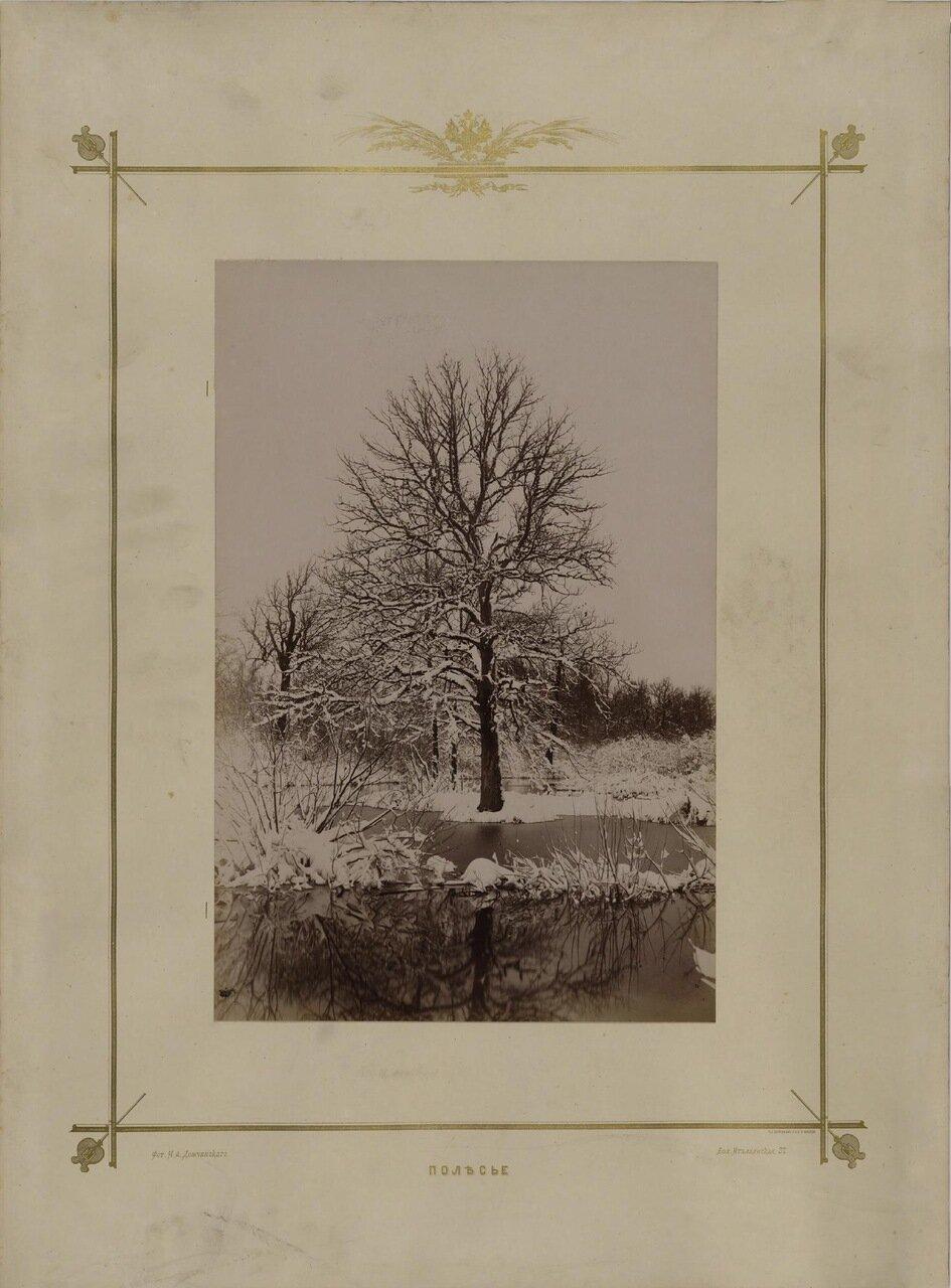 Полесье. 1870-е