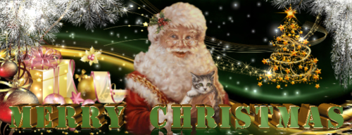 Merry_Christmas_650x250_1.png