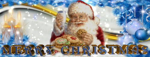 Merry_Christmas_650x250_3.png
