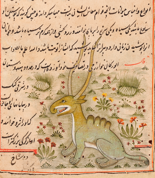The work is a treatise on natural history by al-Muṭahhar ibn Muḥammad al-Yazdi (flourished circa 1184)
