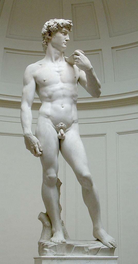 Michelangelo's David (original statue)1501-1504Galleria dell'Accademia, Florence.