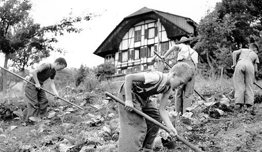 Рабов из детей в Европе подбирали тщательно, зачем тратиться 7